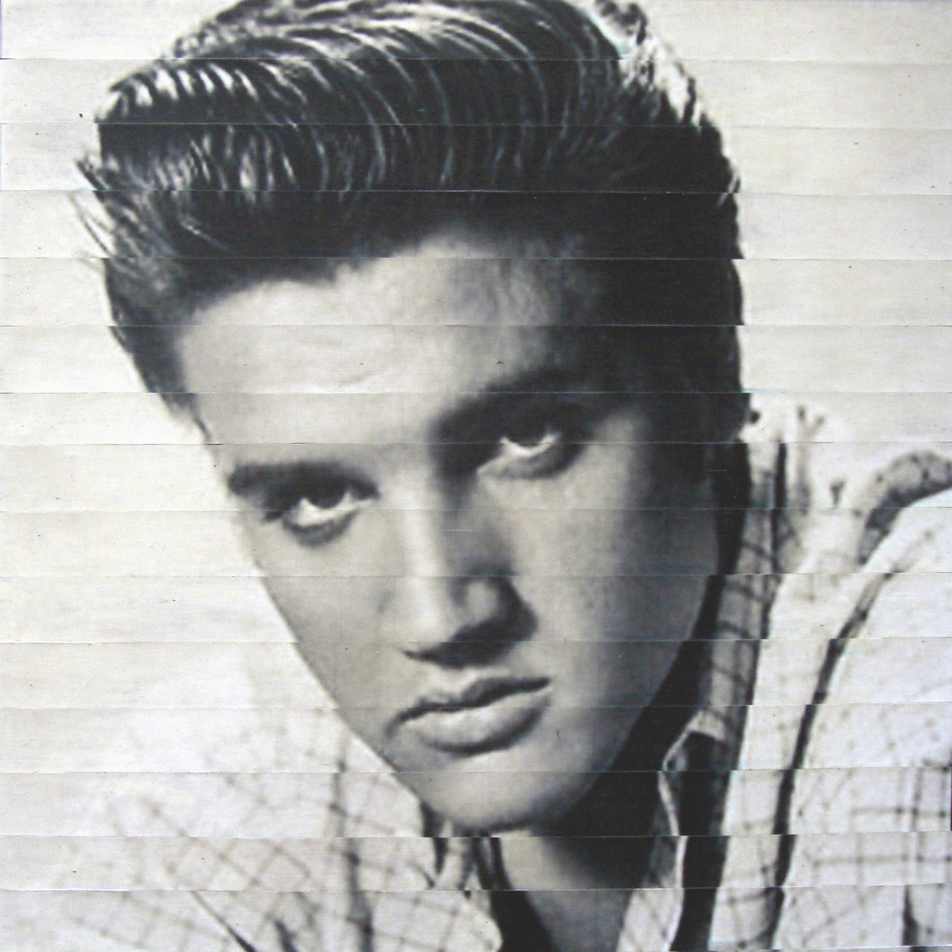 Elvis close-up (2010) Image